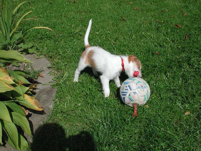 Ein Ball so groß wie ich!