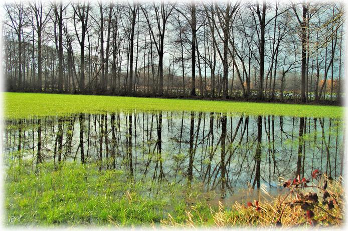 Neue Flächen stehen unter Wasser