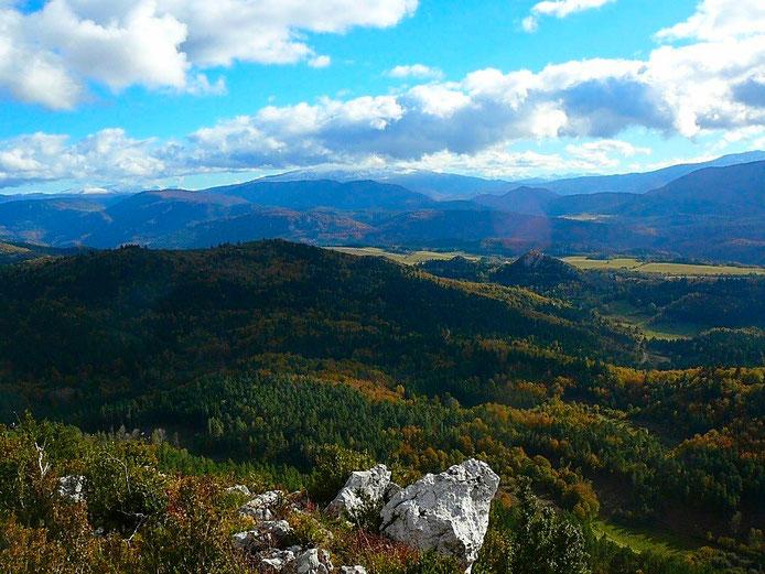 Pic du Bac - Forêt de Callong - vue sur le Madres - randonnee Pyrenees audoises