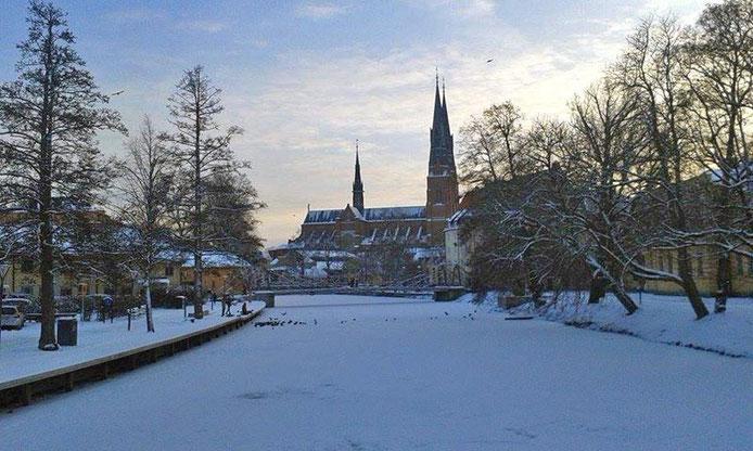 Der Dom in Uppsala in winterlicher Umgebung.