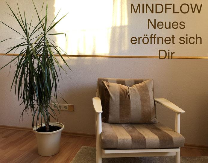 Mindflow Expertsitzung mit Thomas Fischer in 27305 Engeln