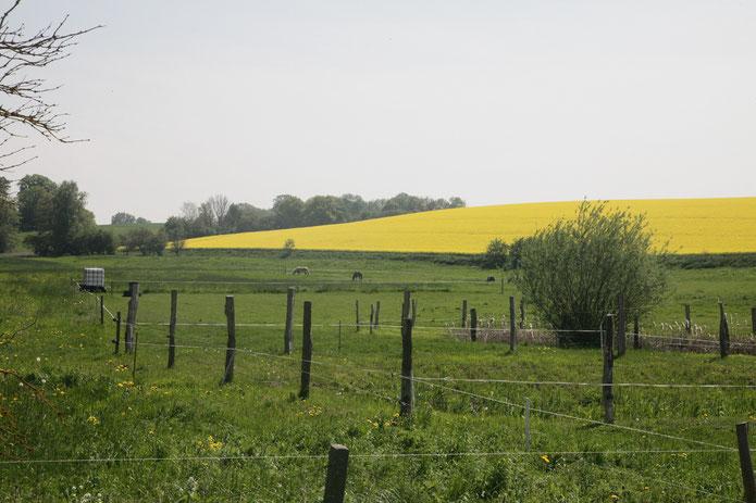 Bredenfelder Landschaft