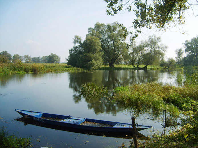 Havel bei Vehlgast
