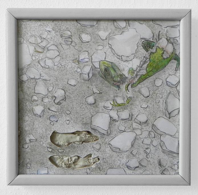Linus Riepler - Toter Gecko / Dead Gecko