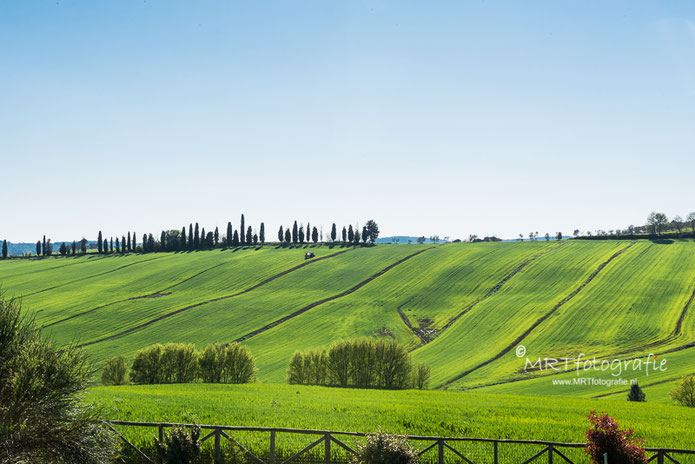 Agriculture Toscane, Zonnige f16-regel
