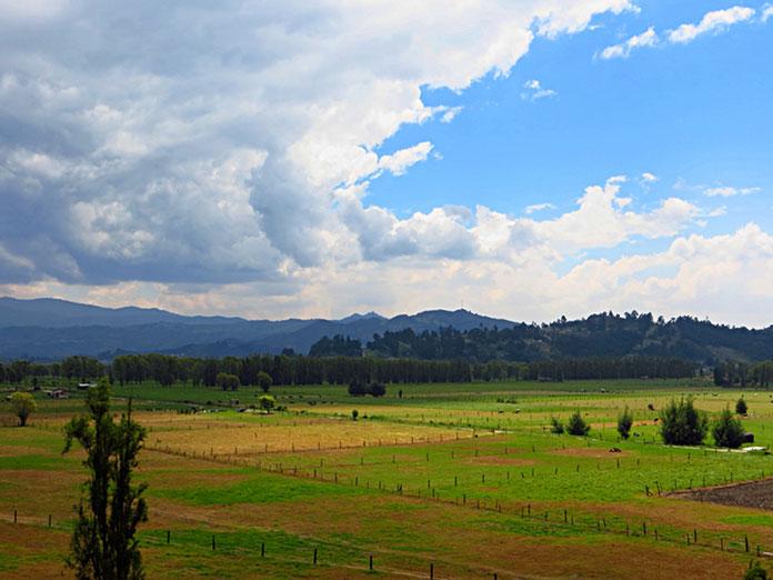 Auf 2650 m ü.M. Fruchtbares Weide- und Ackerland gegen Bogota zu.