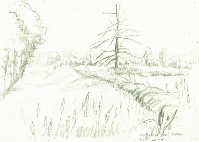 Zeichnung Blei: Landschaft bei Siemen im Wendland Niedersachsen