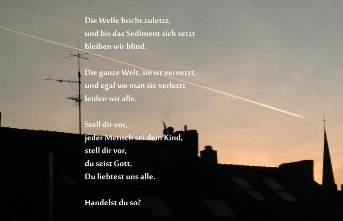 Bild & Text Konrad Meier