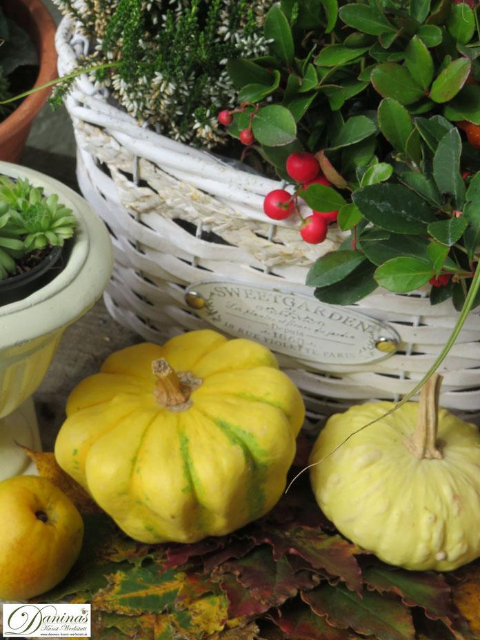 Herbstdeko für draussen mit bunten Herbstblättern, Kürbissen, Quitten und Herbstblumen by Daninas-Kunst-Werkstatt.at