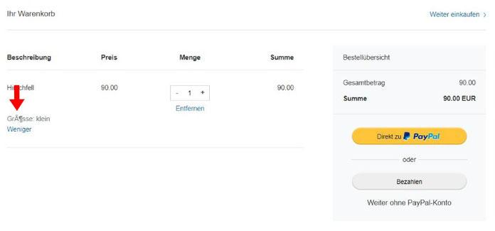 Kostenloser Onlineshop - Anleitung Bild 11