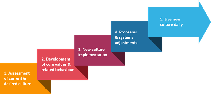 5 Stages of Conscious Culture Transformation