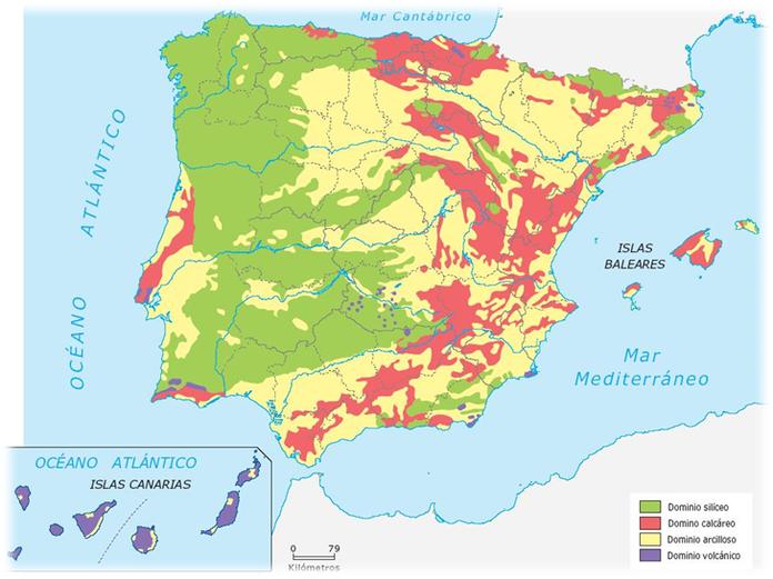 Litología de la P.Ibérica. Dominios litológicos: siléceo, calizo y arcilloso.