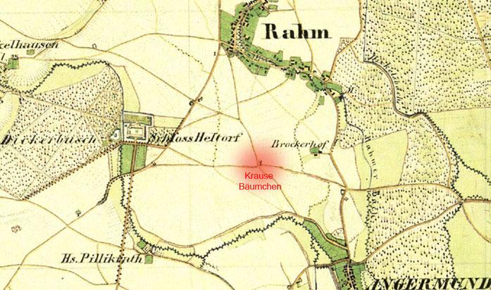 """Rot markiert das """"Krause Bäumchen"""" auf der Preußischen Kartenaufnahme von 1836-1850"""