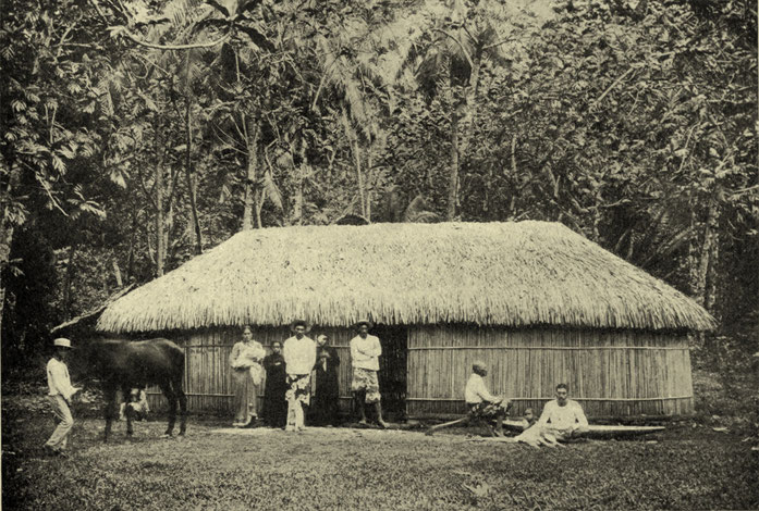 « Tahitian Bamboo House, c. 1902 » par not given — Charles Augustus Keeler (1902) Tahiti the Golden, San Francisco : Oceanic Steamship Company. Sous licence Domaine public via Wikimedia Commons - https://commons.wikimedia.org/wiki/File:Tahitian_Bamboo_Hou