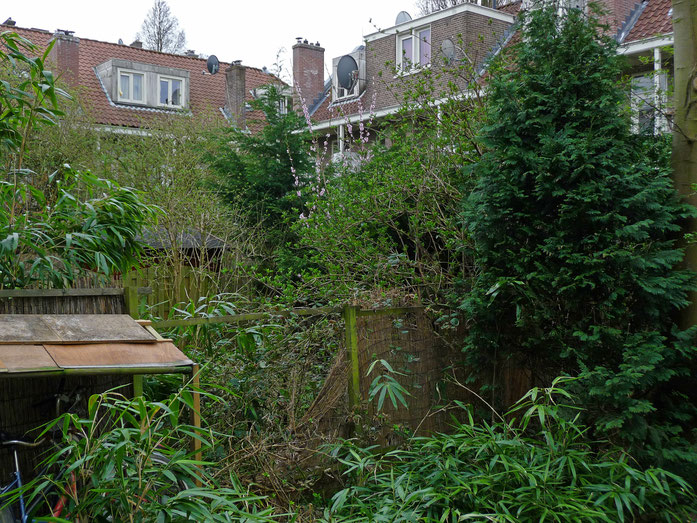 « Wild city-garden in Amsterdam in spring » par FotoDutch — Travail personnel. Sous licence CC BY-SA 3.0 via Wikimedia Commons - https://commons.wikimedia.org/wiki/File:Wild_city-garden_in_Amsterdam_in_spring.jpg#/media/File:Wild_city-garden_in_Amsterdam_