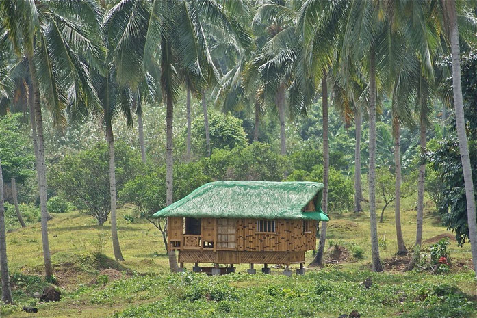 «Nipa Hut taken at Magdalena Laguna Philippines on 2011 April photo 1» par Alexcooper1 — Travail personnel. Sous licence CC BY-SA 3.0 via Wikimedia Commons - https://commons.wikimedia.org/wiki/File:Nipa_Hut_taken_at_Magdalena_Laguna_Philippines_on_2011_
