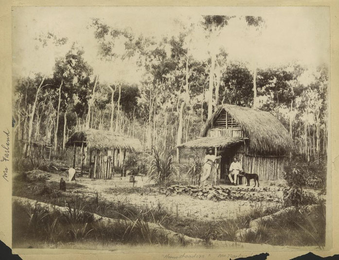 «StateLibQld 1 241028 Homesteaders at McFarland» par Item is held by John Oxley Library, State Library of Queensland. Sous licence Domaine public via Wikimedia Commons - https://commons.wikimedia.org/wiki/File:StateLibQld_1_241028_Homesteaders_at_McFarl