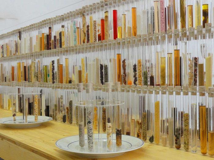 Bild: Max Bottini, Küchenlabor, 2012/2013, 546 gesammelte Lebensmittel, Sammlung Artbon in Arbon
