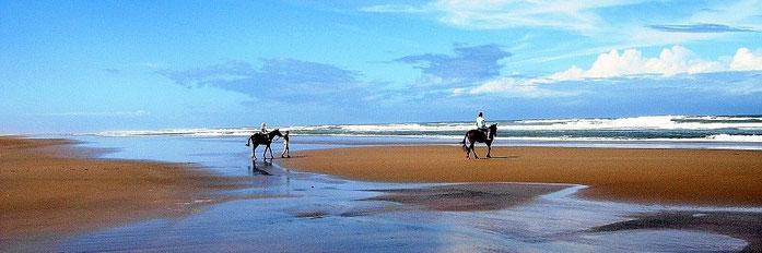 Malindi beach