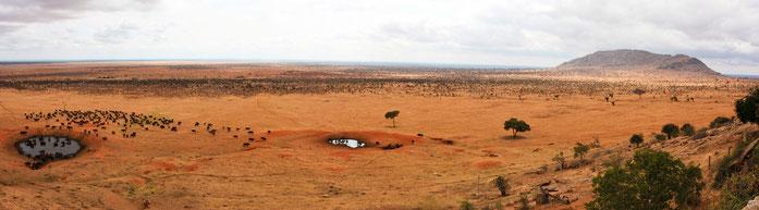 Parco Nazionale Tsavo Ovest
