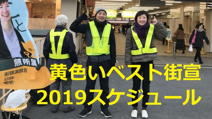 大石晃子,黄色いベスト,yellow vests 2019街宣スケジュールのバナー
