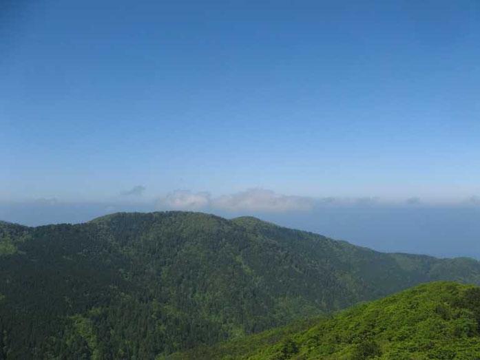 鍋掛山から見た横山