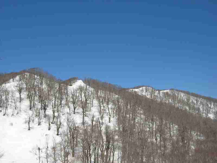 ようやく朝比奈岳が見え出した