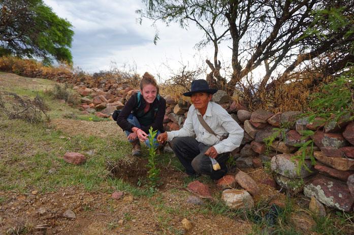 Chloe Mestdagh avec Alberto Quispe pour évaluer la pousse des arbres (2015) - (c) Photo Raphael