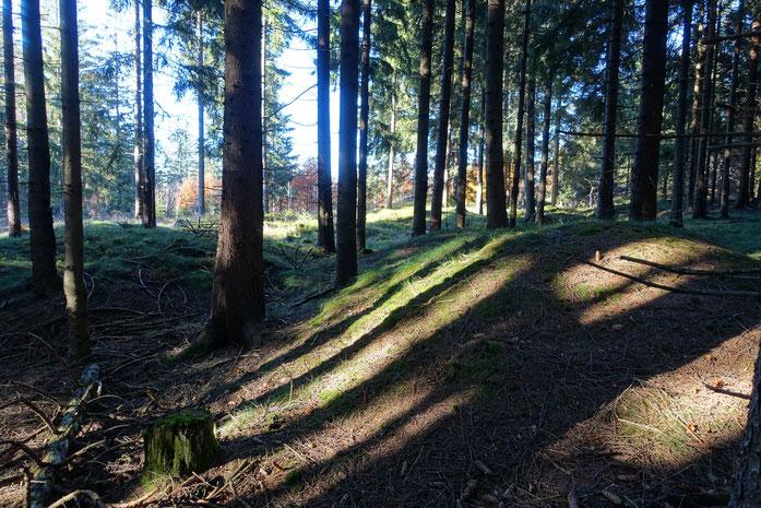 Spuren der Vergangenheit - Halden, Pingen, Schürfgräben