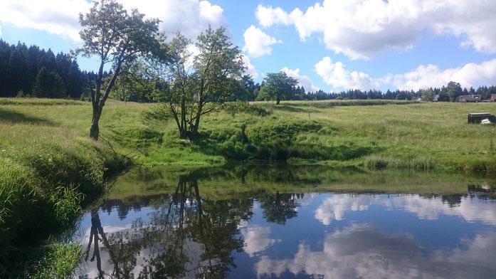 Wasserspeicher im Quellgebiet