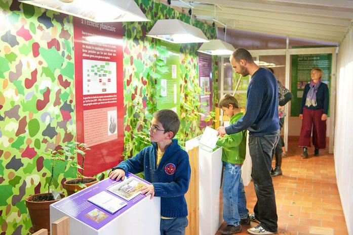 La serre du Musée et son parcours interactif