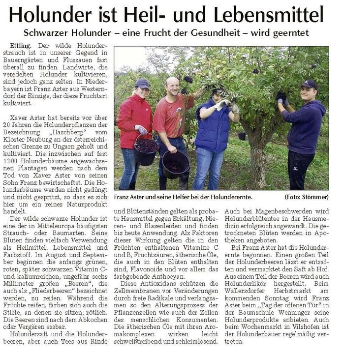 Holunderernte 2011 - Bericht Landauer Zeitung