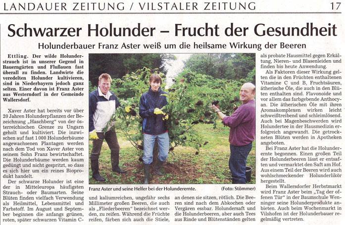 Holunderernte - Bericht 30.08.2010 in der LZ