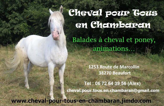Cheval pour Tous en Chambaran, balades à cheval et poney, animations... , 2306 Vallée du Régrimay 38270 Lentiol, Tel 06 72 64 39 56 (Alex), cheval.pour.tous.en.chambaran@gmail.com, www.cheval-pour-tous-en-chambaran.jimdo.com