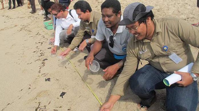 turtle release @Serangan Beach