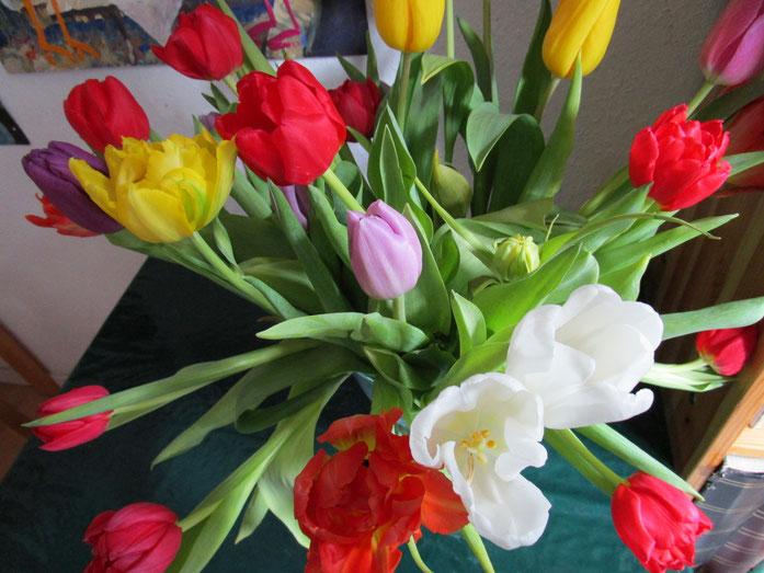 der Frühling wird kommen