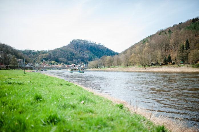 Königstein und die Festung vom Elbufer aus