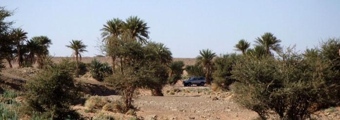 Rutas por el desierto de Marruecos.www.solomarruecos.com