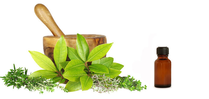 ¿Qué es la Medicina Natural o Naturopatía?