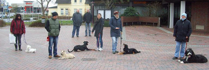 Die Bilder sind beim Alltagstraining bei www.hunde-varel.de entstanden. Der Boden war kalt, hihi.