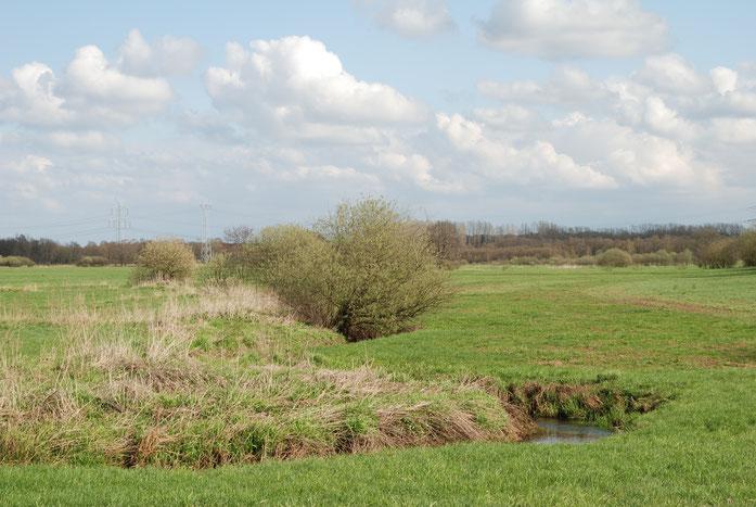 Der Mühlenbach