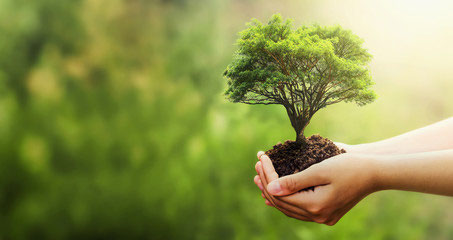 EcoFactory ISO 9001 AISE MVO Nederland ISSA NVZ