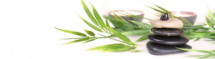 galet et plante pour le côté zen