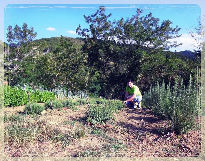 Andrea Passini mentre cura le sue piante di Maggiorana, Rosmarino, Timo e Menta