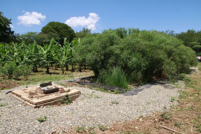 La planta de tratamiento de aguas residuales