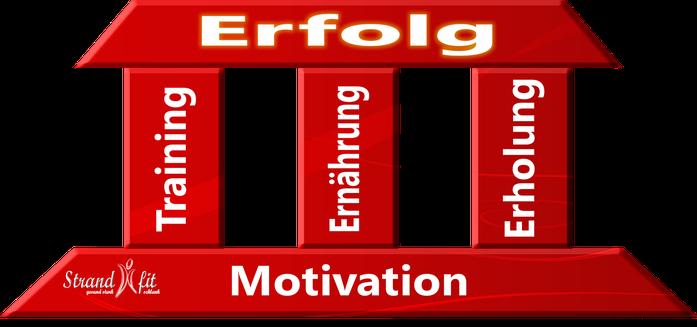 Erfolgsfaktoren im Sport, Erfolgreich Muskelaufbau, Ziele und Erfolge im Fitnesssport, Motivation, Training, Ernährung, Erholung