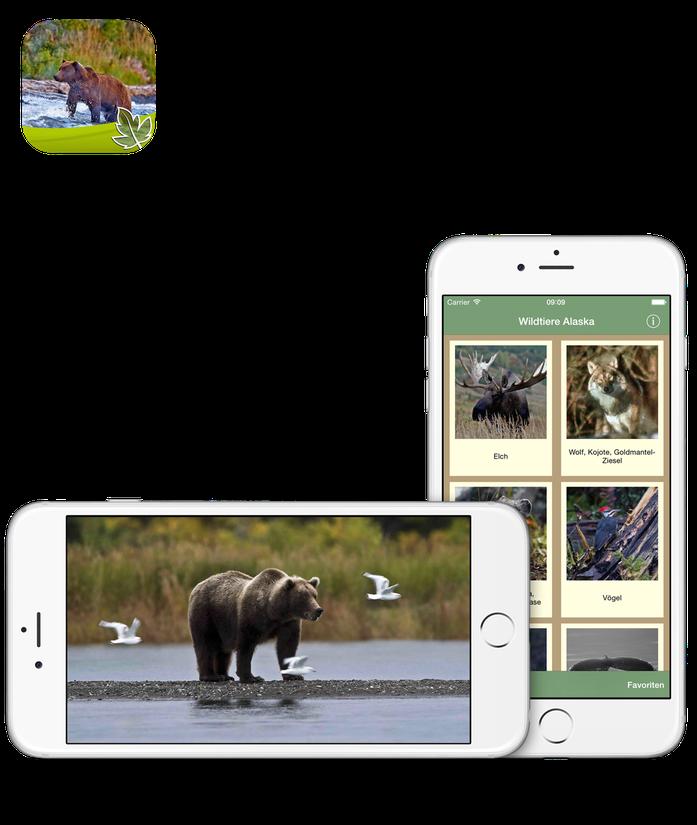 Wildtiere Alaska App