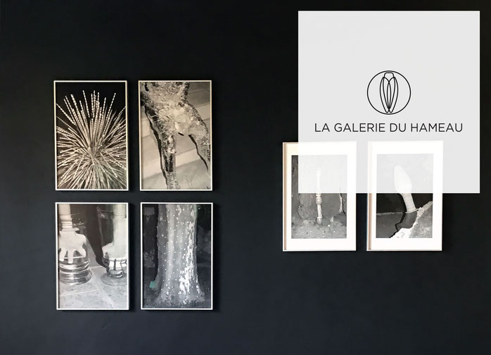 Jonathan Llense exhibits his work at La Galerie du Hameau