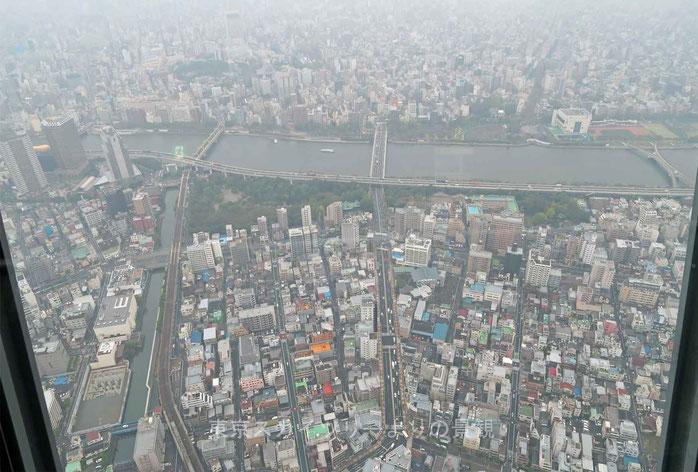 東京スカイツリーよりの景観
