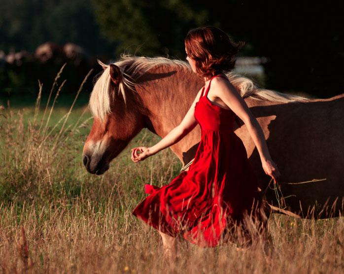 Lavylite Tiere, Vortrag, Vital Pferd, Gesundheit, finanzielle Freiheit